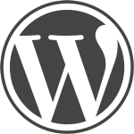 Professional WordPress Developers